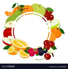 Fruits background frame assorted colorful fruits vector image on VectorStock Fruits And Vegetables Pictures, Vegetable Pictures, Fruits Images, Fruits Name In English, Scrapbook Letters, Pure Coconut Water, Fruit Names, Fruit Logo, Fruit Vector