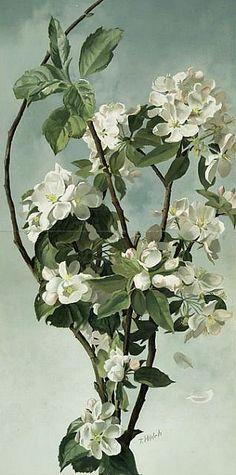 L. Prang & Co., Apple Blossoms,19th century. Via Magdalena