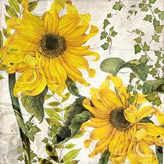 Floral Painting - Carina Sunflowers by Mindy Sommers