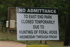 Hog Wars: Houston