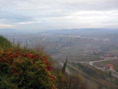 Wijntour in Piemonte: Barolo en Barbaresco