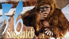 Sasquatch Chronicles SC EP:56 Sasquatch looking in the window