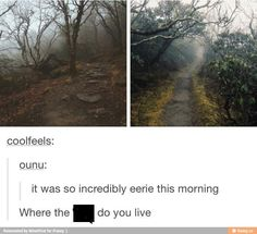 Looks like someplace in Salem tbh <-- I want to live somewhere like this!< looks like the colder places in hell. Like the places you want to go to during hell's summer. Tumblr Stuff, My Tumblr, Tumblr Posts, Tumblr Funny, Funny Memes, Jokes, Hilarious, Overwatch, A Silent Voice