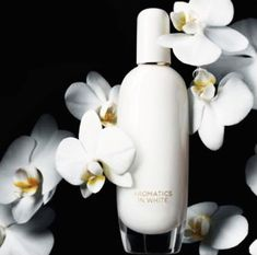 Clinique Aromatics in White # amber balsamic warm spicy musky vanilla rose