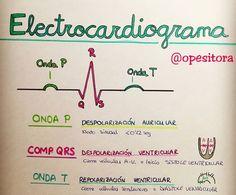 Medicine Notes, Medicine Student, Biology Lessons, Science Biology, Med Student, Student Studying, Nursing School Notes, Cardiac Nursing, Medical Anatomy