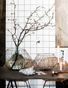 Lovenordic Design Blog: Some more photograph love from Daniella Witte