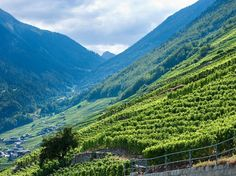 Valais, Switzerland If you've had a wine from Switzerland, chances are it came from the Valais, the…