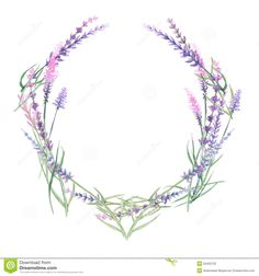 Wreath Of Lavender - Download From Over 38 Million High Quality Stock Photos, Images, Vectors. Sign up for FREE today. Image: 55450732