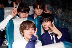 [프로듀스 X 101] 국프님과 함께 한 '두 번째 블루카펫 세리머니' 현장 비하인드 : 네이버 포스트 Trauma, Pose Reference Photo, Woollim Entertainment, Produce 101, Cute Boys, Boy Groups, Handsome, Kpop, Survival