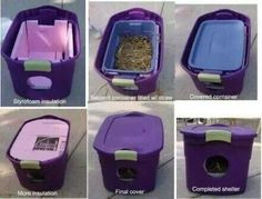 Warm house for outdoor cats