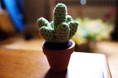 Crochet Cactus | http://lifeawesomeblog.com