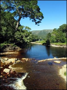 The Garden Route, Oudtshoorn.  (www.howzattravel.co.uk)