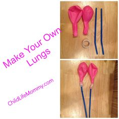 DIY Lungs to make to help children with asthma, cystic fibrosis or breathing complications understand the function of the lung.