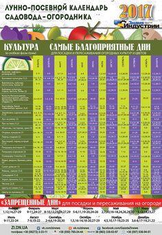 лунный посевной календарь на 2017 года садовода и огородника: 12 тыс изображений найдено в Яндекс.Картинках
