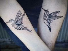 Incredible hummingbirds by David Hale
