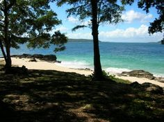 The  Beach at Cayo Saetia