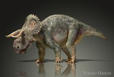 Nasutoceratops_20140801.jpg