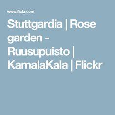 Stuttgardia | Rose garden - Ruusupuisto | KamalaKala | Flickr