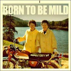 Born to Be Mild , señoras moteras con el traje de ir a la tómbola benéfica
