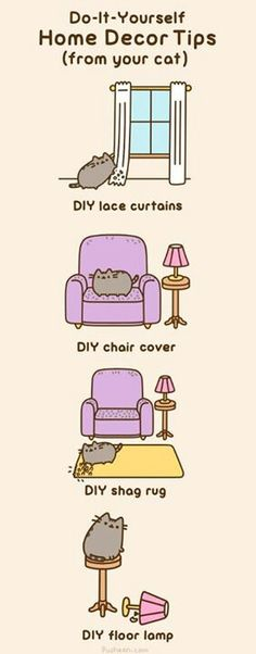 DIY cat...yep this is almond!