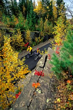 One of 4000 miles of bike trails in Minnesota! (photo by Explore MN) Bike Trails, Biking, Minnesota Tourism, Mi Photos, Mall Of America, Lake Superior, Nature Paintings, Outdoor Activities, Rivers