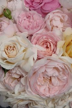 65 Ideas Birthday Flowers Bouquet Peonies Garden Roses Ana Rosa For 2019 Love Rose, My Flower, Fresh Flowers, Pretty Flowers, Pink Flowers, Pink Peonies, Pastel Roses, Yellow Roses, Pastel Bouquet