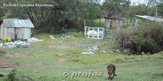 Moradores temem surgimento de nova favela em Jacarezinho - http://projac.com.br/noticias/moradores-temem-surgimento-de-nova-favela-em-jacarezinho.html