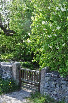 Grinden till Hångers källa, Gotland | Flickr - Photo Sharing!