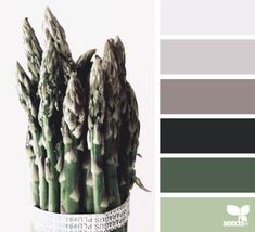 Design Seeds celebrate colors found in nature and the aesthetic of purposeful living. Colour Pallette, Colour Schemes, Color Patterns, Color Combinations, Design Seeds, Pantone, Inspiration Design, Color Swatches, Colorful Interiors