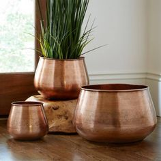 Etched Metal Planters in Copper or Silver - Set of 3 | VivaTerra
