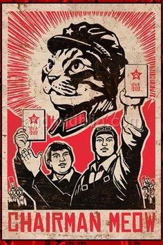 explains a lot about cats.