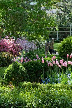 Charleston, SC Gardens--my great love ISSUU - Gardens of South Carolina by Georgianna Lane Small Gardens, Outdoor Gardens, Charleston Gardens, Charleston Sc, Beautiful Gardens, Beautiful Flowers, Landscape Design, Garden Design, Garden Cottage