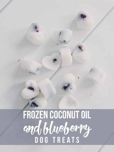 Homemade Dog Food Give your dog an extra daily boost of nutrition with these homemade Frozen Coconut Oil and Blueberry Dog Treats! - Give your dog an extra daily boost of nutrition with these homemade Frozen Coconut Oil and Blueberry Dog Treats! Puppy Treats, Diy Dog Treats, Dog Treat Recipes, Healthy Dog Treats, Dog Food Recipes, Summer Dog Treats, Cbd Dog Treats Recipe, Food Tips, No Bake Dog Treats