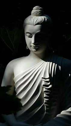 """The purpose of Life. Buddha says its nothing. The essence of his enlightenment was """"nothing''. Gautama Buddha, Amitabha Buddha, Buddha Buddhism, Buddhist Art, Buddha Tattoos, Buddha Face, Buddha Zen, Buda Wallpaper, Lord Buddha Wallpapers"""