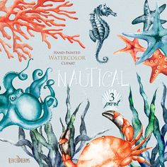 This set of 12 high quality hand painted watercolor elements: Nautical watercolor clipart: Crab, Octopus, Seahorse, Seaweed, Corals, Starfish Perfect