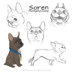dog training,teach your dog,dog learning,dog tips,dog hacks Cute Animal Drawings, Animal Sketches, Cartoon Drawings, Drawing Sketches, Art Drawings, Mangaka Anime, French Bulldog Drawing, French Bulldog Cartoon, Dog Face Drawing