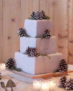 Pinecones topped the dulce de leche cake with salted caramel filling and vanilla buttercream.