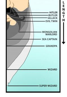 Facial hair chart Dwight is at Sea Captain,but almost to Grandpa. Moustaches, Hair Chart, Beard No Mustache, Mustache Party, Handlebar Mustache, College Humor, Fall Hair, Just For Laughs, Hair Lengths
