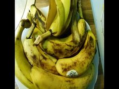 ORQUIDEAS - El Té de Cáscara de Plátano a mi manera. POTASIO para tus plantas. - YouTube