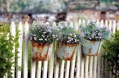Recycle old pots, screw to the fence and plant flowers!    http://www.facebook.com/pages/Backyard-Diva/117483991696529