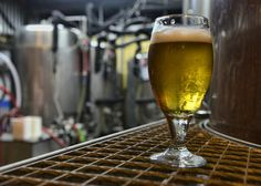 The beer revolution comes to Costa Rica — The Tico Times