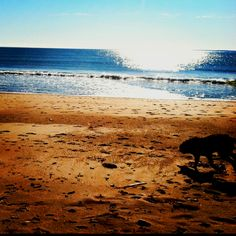 East Matunuck Beach - My favorite beach back home. I lived right on Matunuck beach for two years in college.