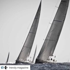 #Repost @trendy.magazine  If you could sail anywhere in the world where would you go?  Inspired by @loveforluxe  Don't forget to tag your friends!  #ShareMySea #ShareMySea