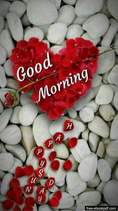 Good Morning Happy Sunday, Good Morning Cards, Morning Morning, Good Morning Flowers, Good Morning Good Night, Good Morning Wishes, Sunday Wishes, Funny Morning, Good Morning Sweetheart Quotes