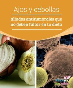 Ajos y cebollas: aliados antitumorales que no deben faltar en tu dieta Para beneficiarnos de las propiedades tanto del ajo como de la cebolla es importante que los consumamos crudos. Hay varios estudios que respaldan su capacidad para prevenir algunos tipos de cáncer