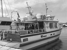Pictures of Saint-Tropez: Boat excursion Golfe de Saint-Tropez