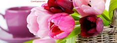 Spring Tulips Facebook Cover