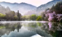 RT Piclogy #Spring in South Korea | Photography by ©Kim Suk Eun