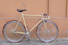 Salix - Iride Fixed Modena