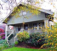 """SE Portland Hawthorne Bungalow with kerria japonica plant in bloom. From """"Do Home Buyer Letters Make a Difference?"""" DanniPDX blog post: http://www.dannipdx.com/home-buyer-letter/"""